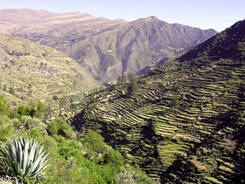 Valley Pumamarka